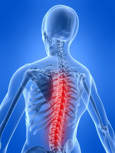 Healthy Back Physiotherapy Toronto